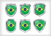 Brazília pajzs, vektoros illusztráció