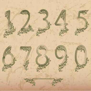 Set of vector numbers flora stock vector