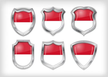 Indonesian shield , vector illustration stock vector