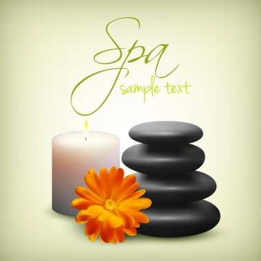 Spa still life with flower stock vector