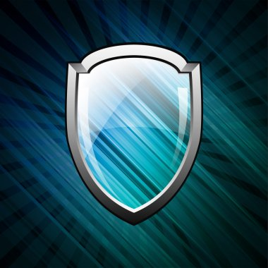 Vector shield image vector illustration stock vector