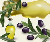 olive food tasty  vector illustration