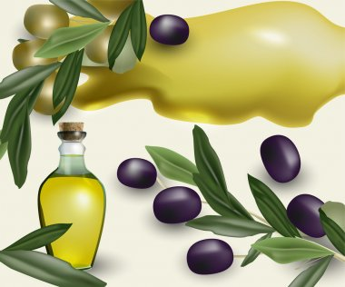 Olive food tasty  vector illustration stock vector