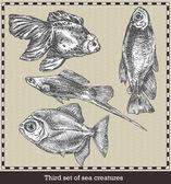 Állítsa be a tengeri halak. Retro stílusú vektoros illusztráció. Elszigetelt, a szürke háttér