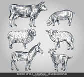 Set of domestic animals cow, sheep, pig, goat, donkey. Vector illustration