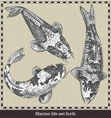 Készlet a hal. Retro stílusú vektoros illusztráció. Elszigetelt, a szürke háttér