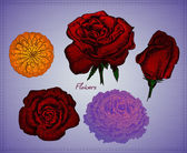 Vektor virág meg lila háttér
