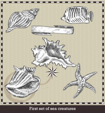 Set of sea fish,seashell and starfish. Retro style vector illustration. Isolated on grey background stock vector