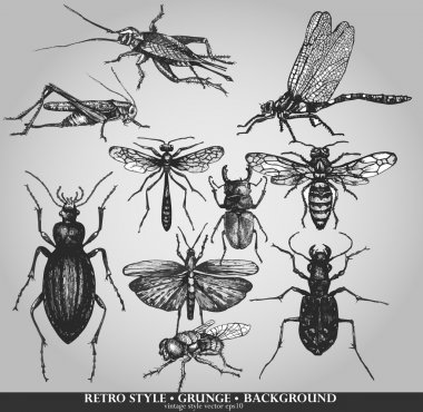 Vector set of insects on grunge background stock vector
