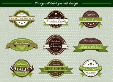 Vector vintage set label for old design on green stock vector