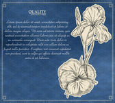 Vintage pharmacy label with healing plant. Vector illustration