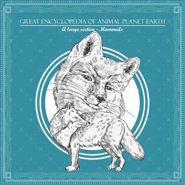 Fox. Illustration for great encyclopedy of animals stock vector