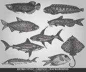 eine Reihe von Meeresfischen. Vektorillustration im Retro-Stil