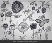 Absztrakt virágos művészeti, virágok, növények, tételek, dekoráció szürke háttér