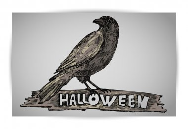 Halloween crow on grey background. Vector illustration stock vector