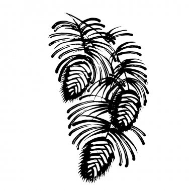 decorative silhouette pine cone with pine needles