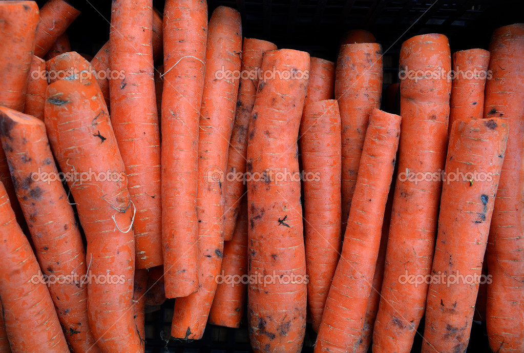 Fresh garden carrots for sale at farmers market. Background