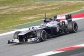Pastor Maldonado - Williams FW35