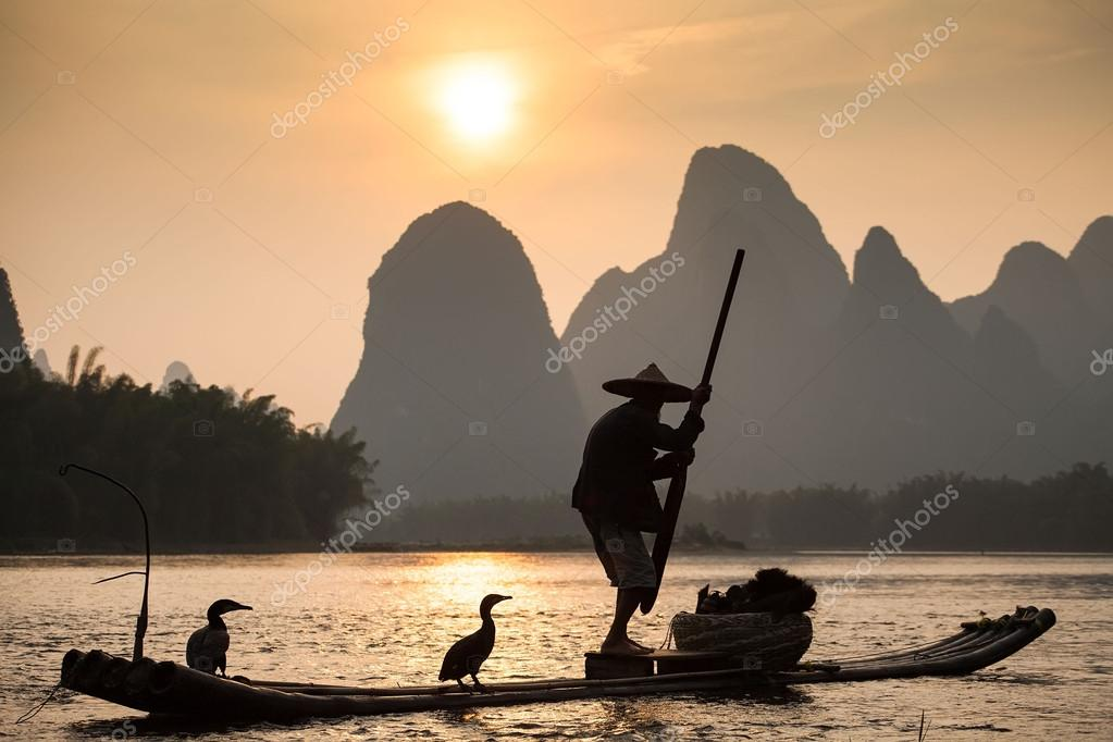 Boat with cormorants birds