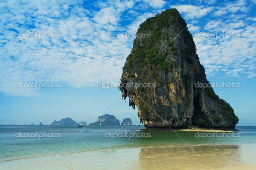 Tropical green beach