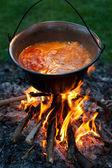 Magyar paprikás krumpli főzés