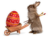 Fotografie Funny Easter bunny rabbit with a wheelbarrow and a red Easter eg