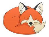 Photo Fox Sleeping
