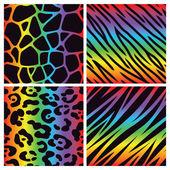 Fotografia raccolta di stampa animali arcobaleno