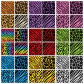 Fotografia collezione animali colori stampa