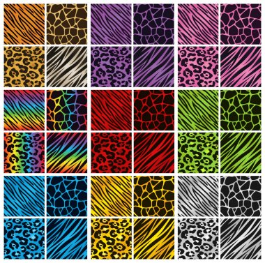 Animal Print Colors Collection