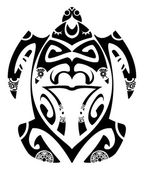 Photo Maori turtle