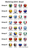 Mistrovství světa ve fotbale 2014 - Brazílie