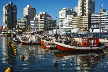 """Картина, постер, плакат, фотообои """"Пунта-дель-Эсте, Уругвай"""", артикул 24454489"""