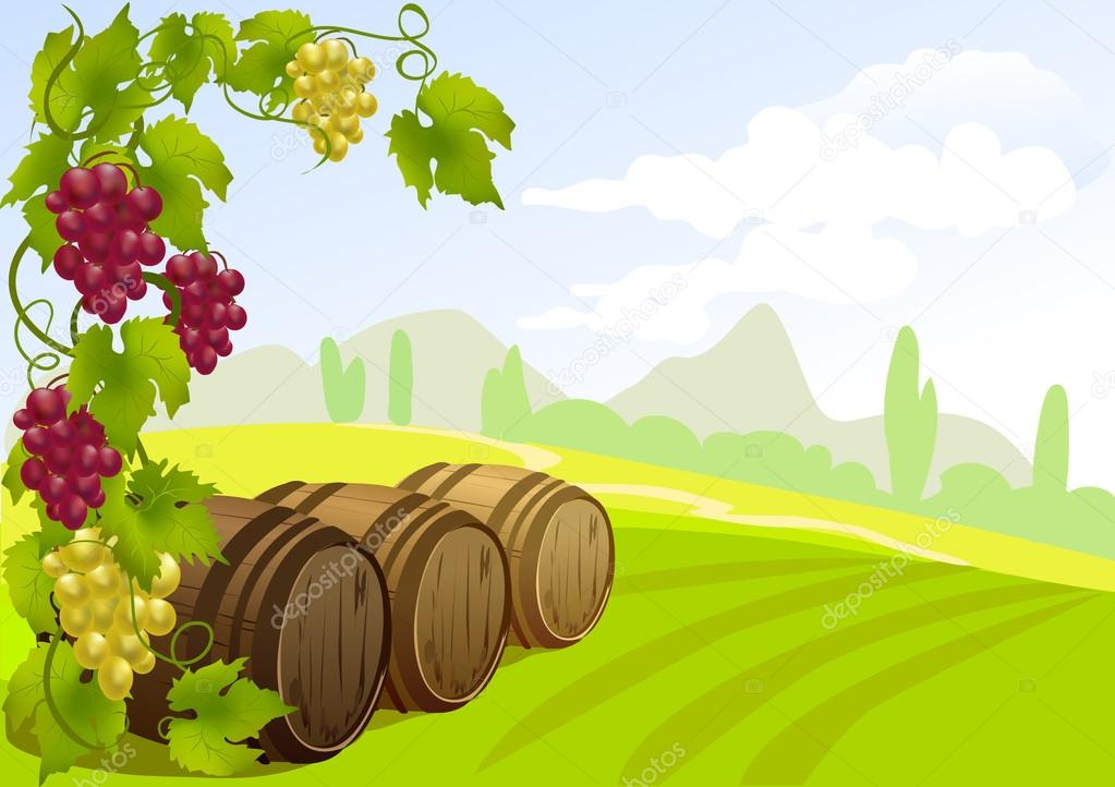 grapes, barrels and rural landscape