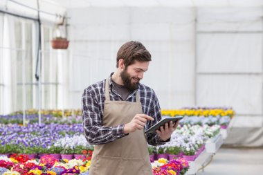 Men working at greenhouse with a tablet