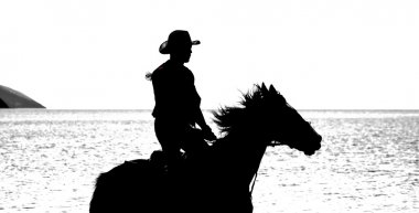 Slhouette of cowboy on horse