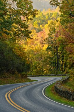 S-curve road on Skyline Drive, tucked into the blue ridge mountains in Shenandoah National Park, Virgina. stock vector