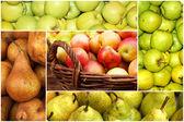 koláž zralých jablek a hrušek