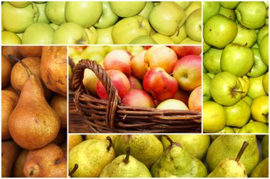 Collage of ripe apples and pears