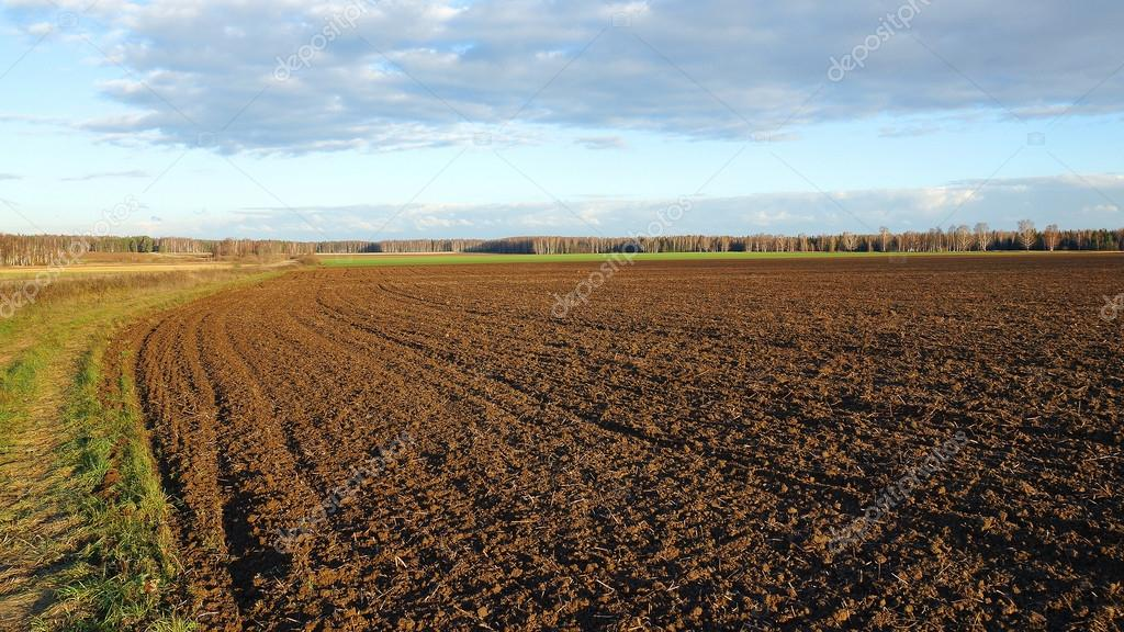 agricultural land after cultivation, autumn evening