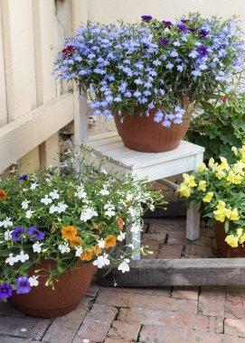 patio decoration flowers