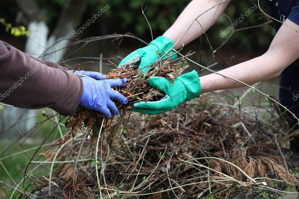 Garden team work