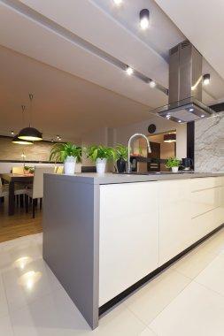 Urban apartment - modern kitchen, vertical