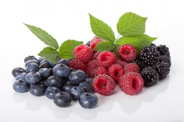 Composition of fresh wildberries