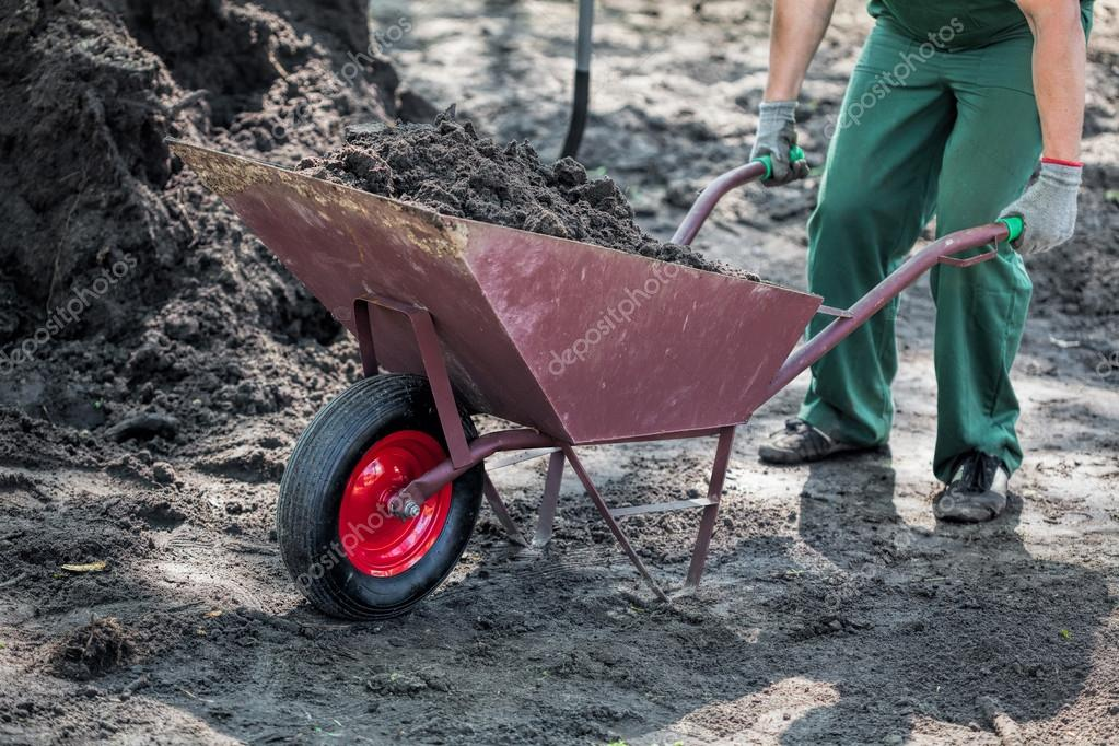 Worker transports a soil