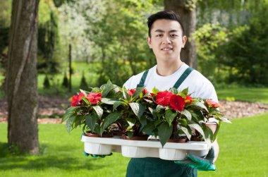 Man with flower seedlings