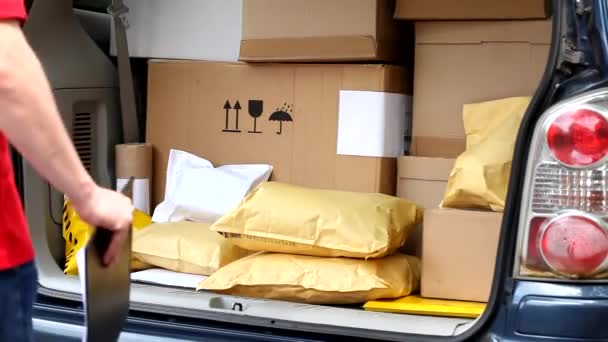 doručení člověk brát balíček od auta