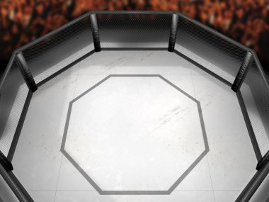 Octagon Fighting Ring