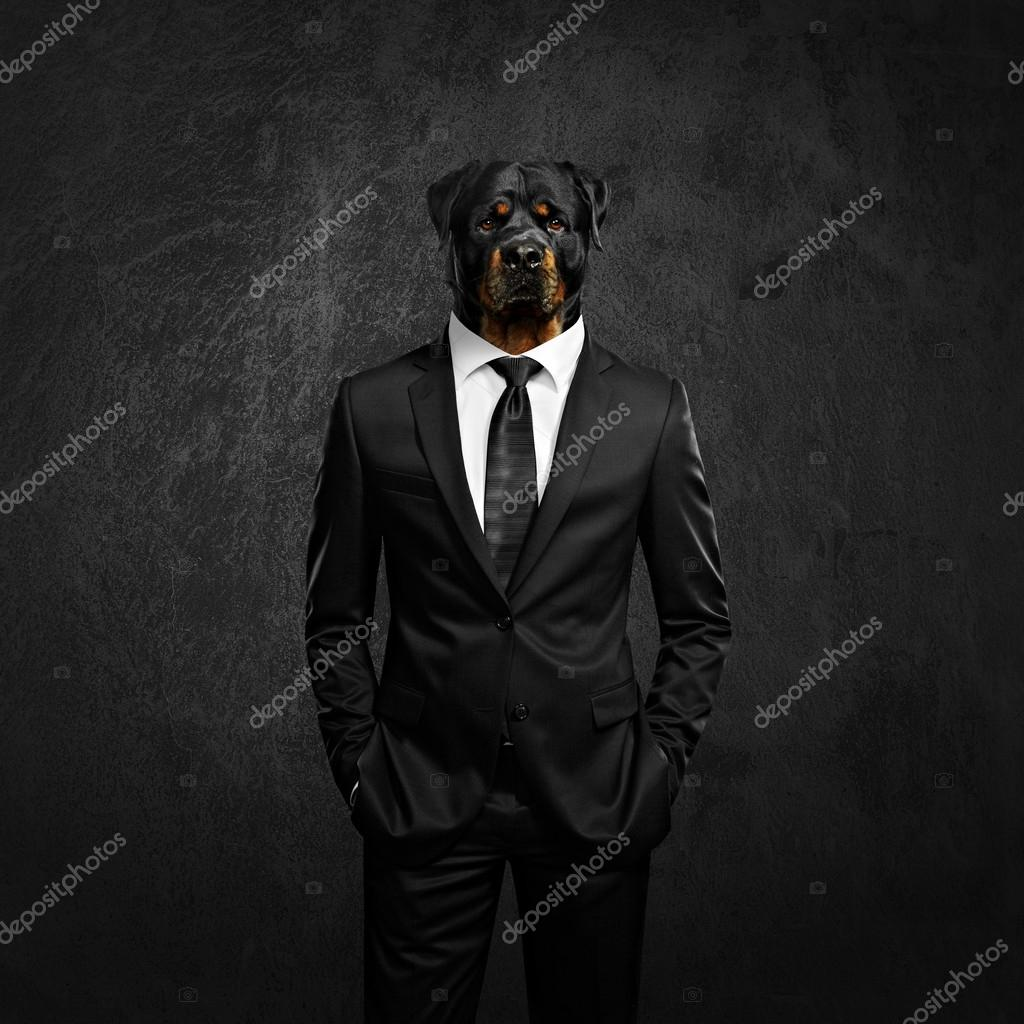 elegant man with dog head