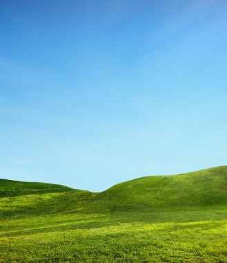 Green field and blue sky stock vector